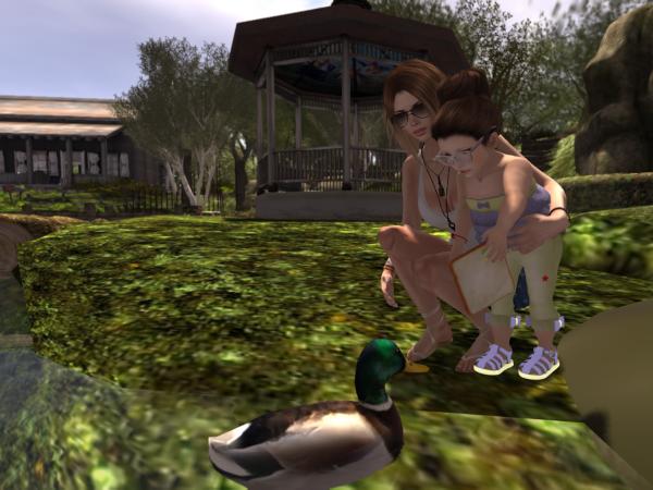 ducks_005